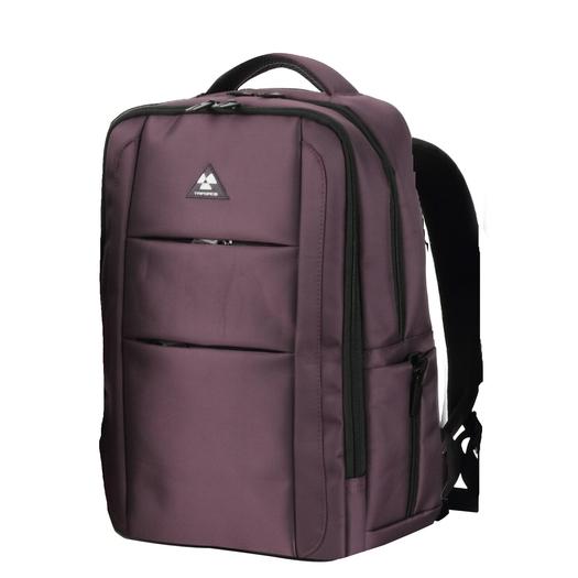 Aerea Laptop Backpacks